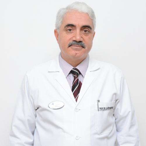 Prof. Dr. Ahmet Gödekmerdan